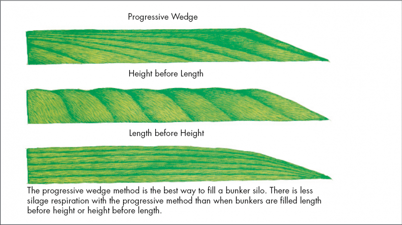 ProgressiveWedge