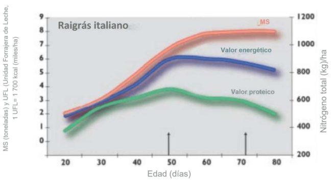 Evolución de la cantidad de materia seca frente a la proteína y el valor energético del raigrás italiano